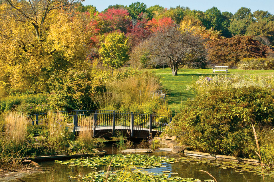 Fall at Holden Arboretum
