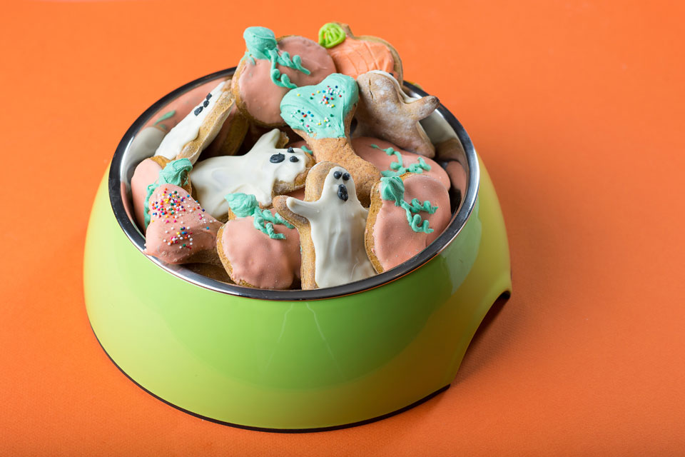 dog-treats_recipe