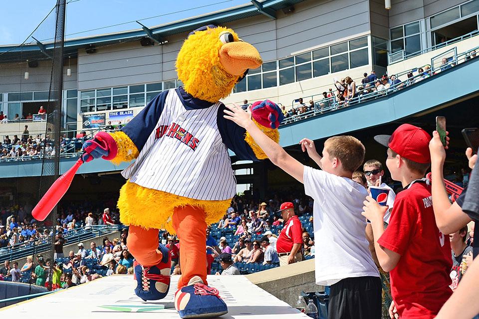 Toledo Mudhens Budget Baseball