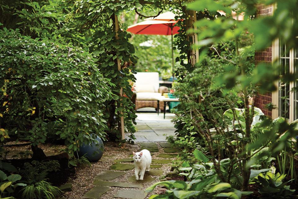 Ann Cicarella's Driveway Entry