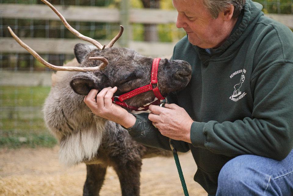 man_with_reindeer