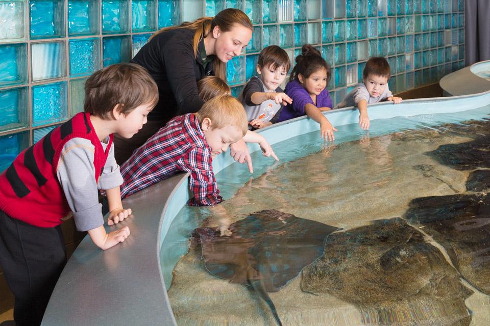 BoH_Toledo-Aquarium