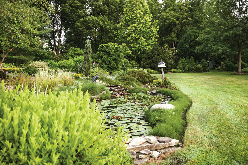The pond at Beth Karp's Indian Hills home