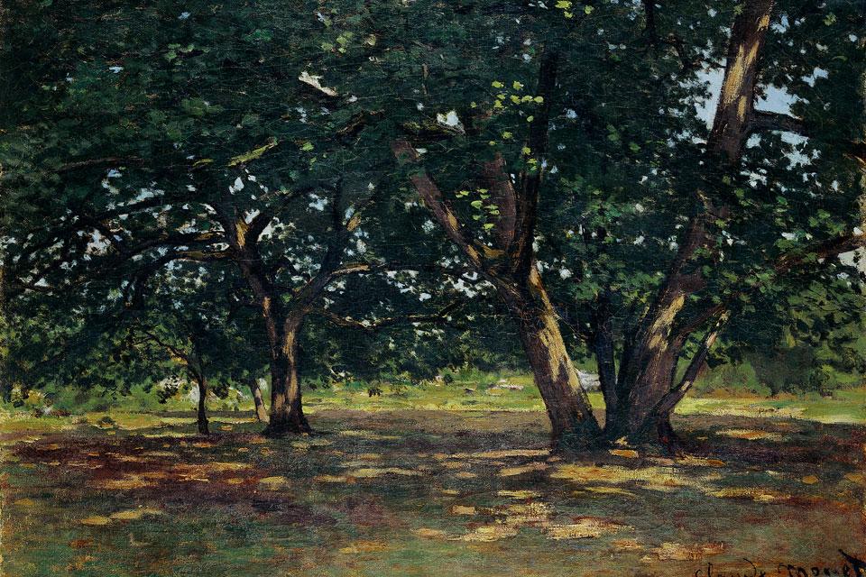 """Claude Monet's """"Foret de Fontainebleau"""""""