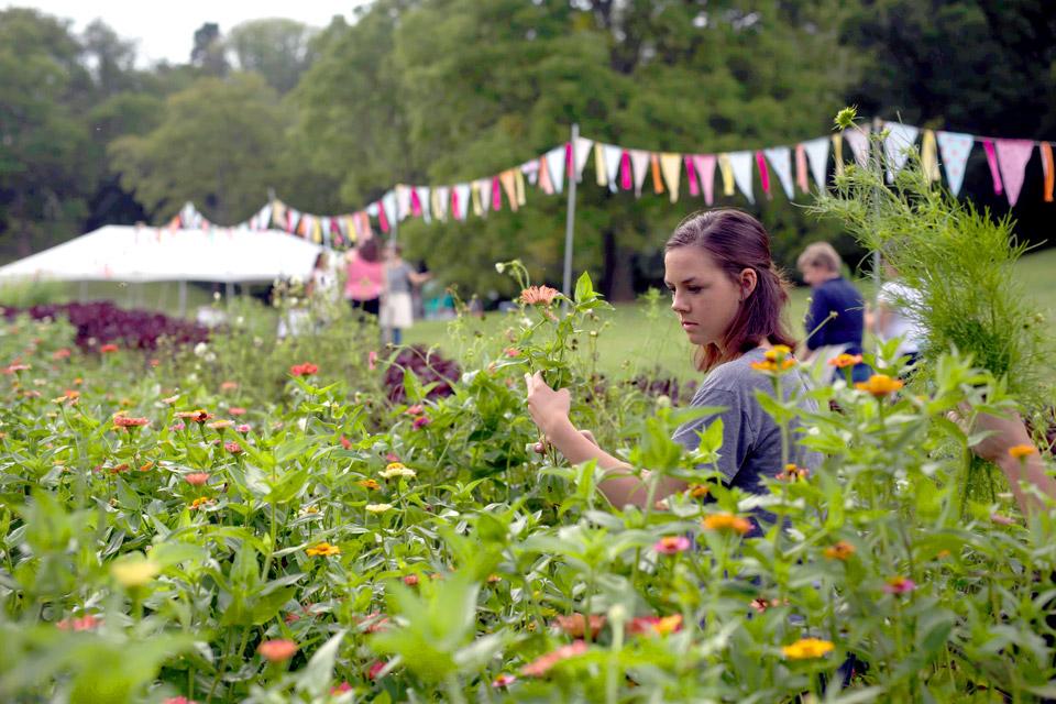 Best-of-Flower-Farm