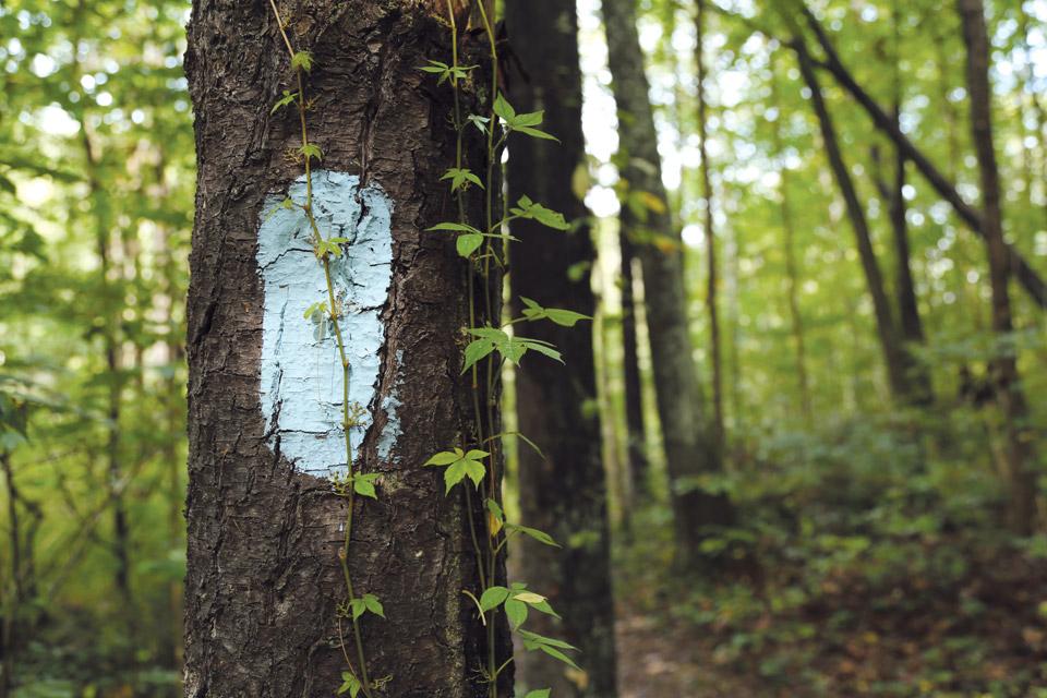 Buckeye-Trail-marker