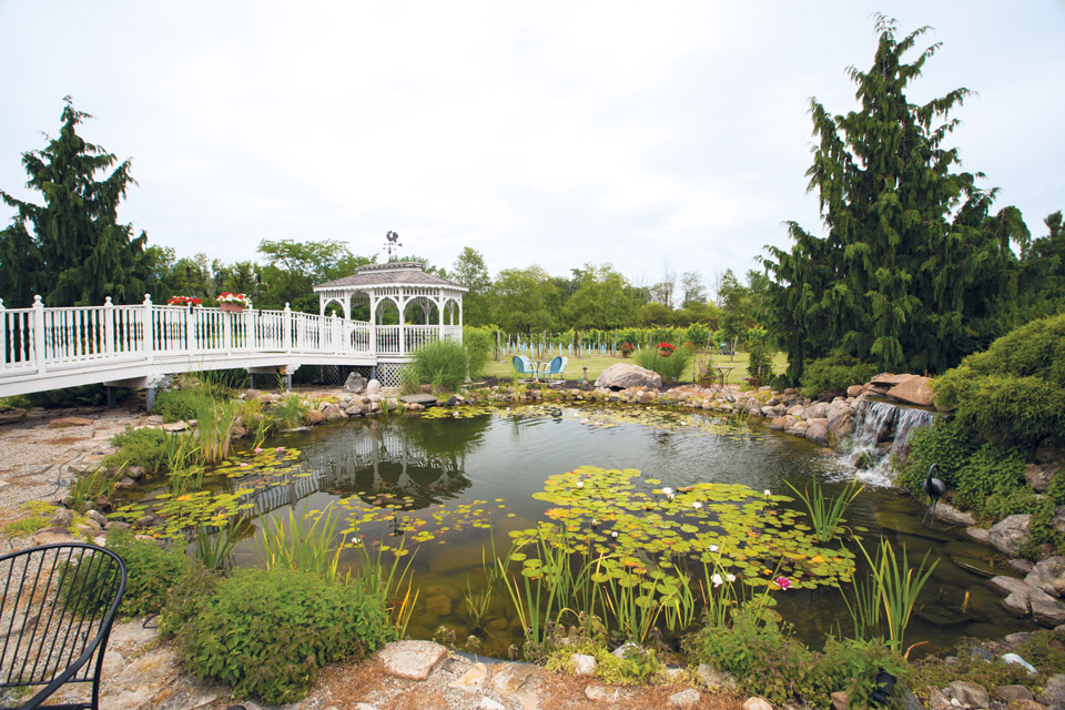 pond-at-Chateau-Tebeau_Winery