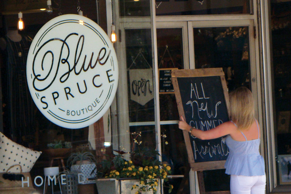 Blue Spruce in downtown Wooster