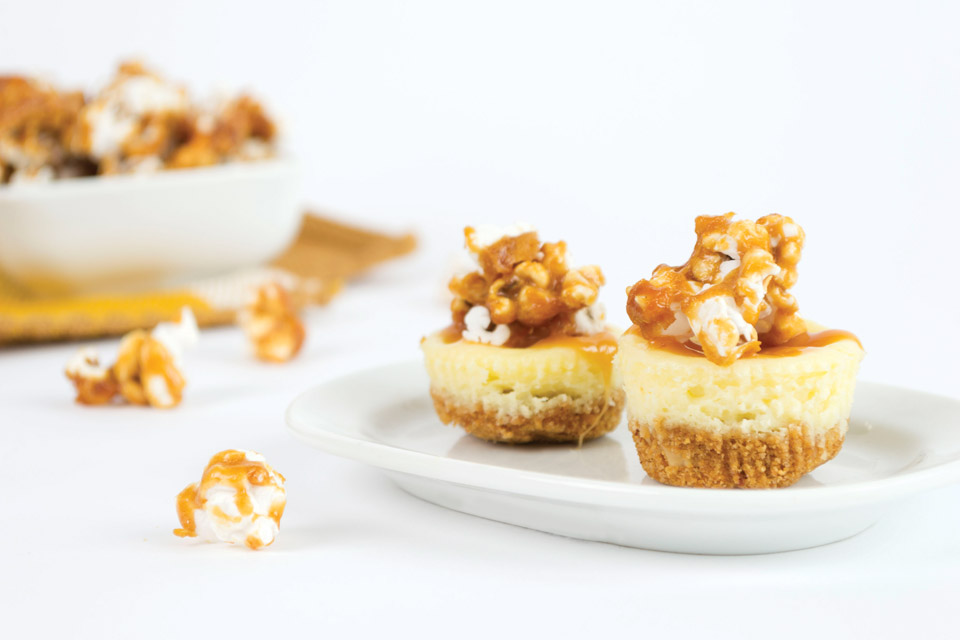 Cheesecake Bites Recipe