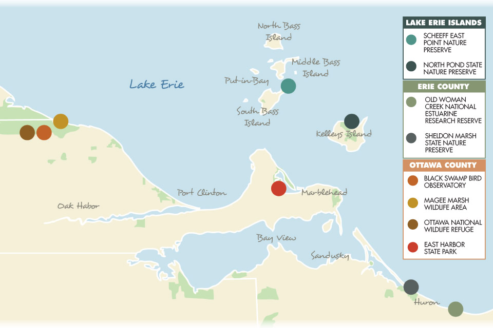 8 Great Ohio Birding Spots on kelleys island campground, south bass island state park map, middle bass island map, kelleys island ferry, kelleys island rentals,
