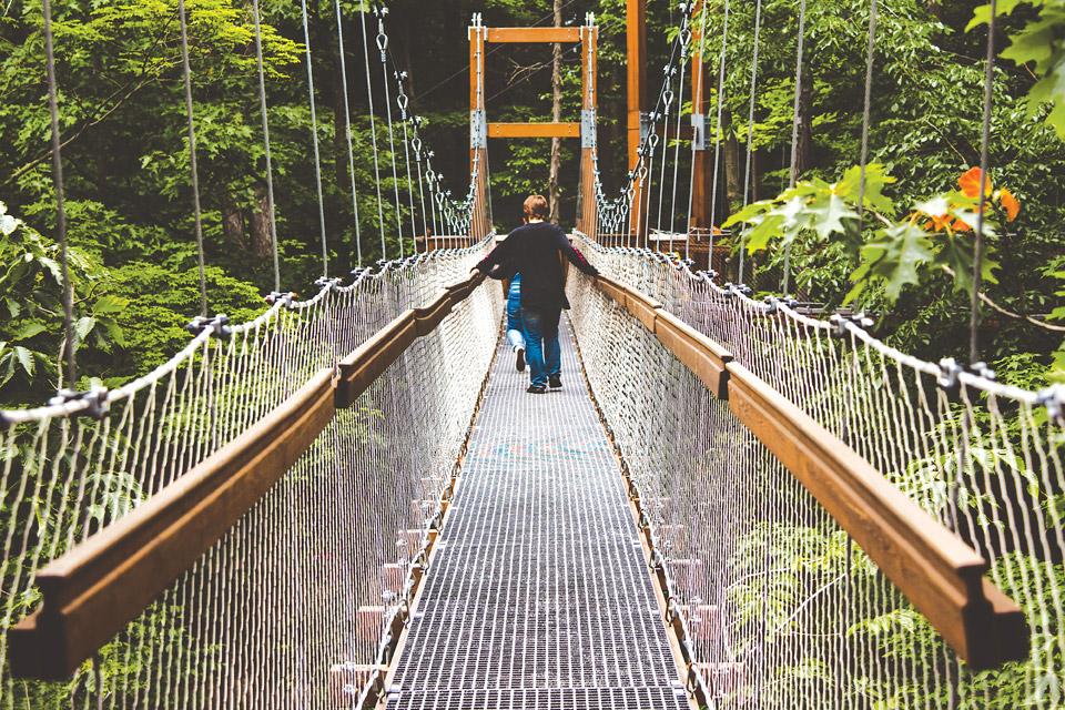 Holden Arboretum's Canopy Walk