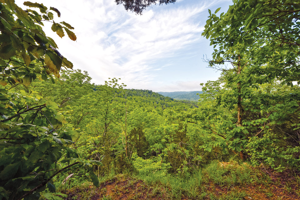 Edge of Appalachia Preserve System (photo by Randall Schieber)