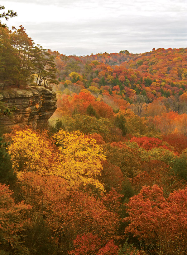 Conkles Hollow (photo by Aaron Pospisil)