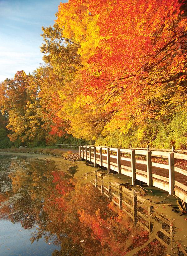 Sharon Woods State Park (photo by Darko Glazer)