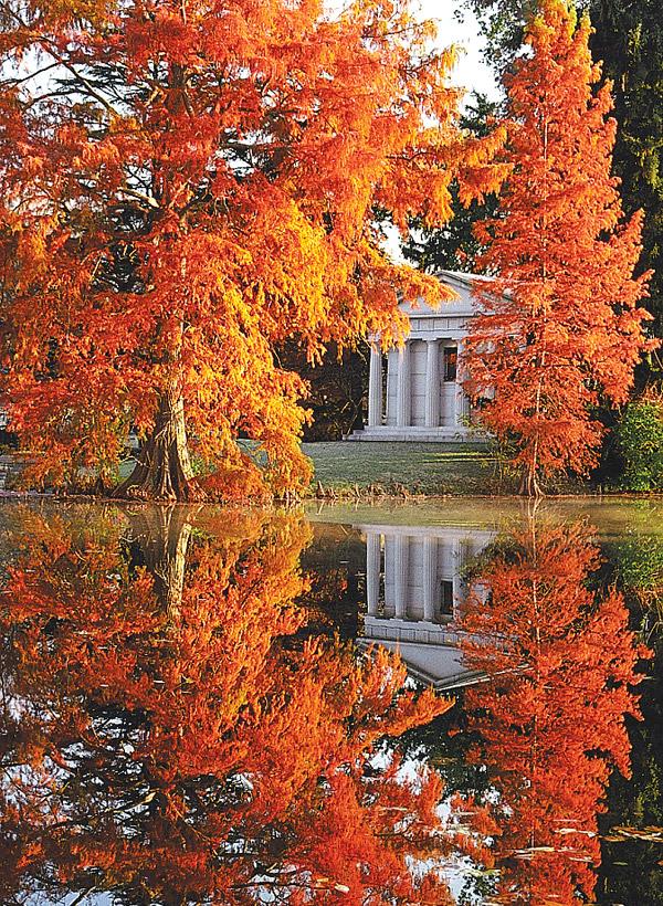 Spring Grove Cemetery (photo by David Ohmer)