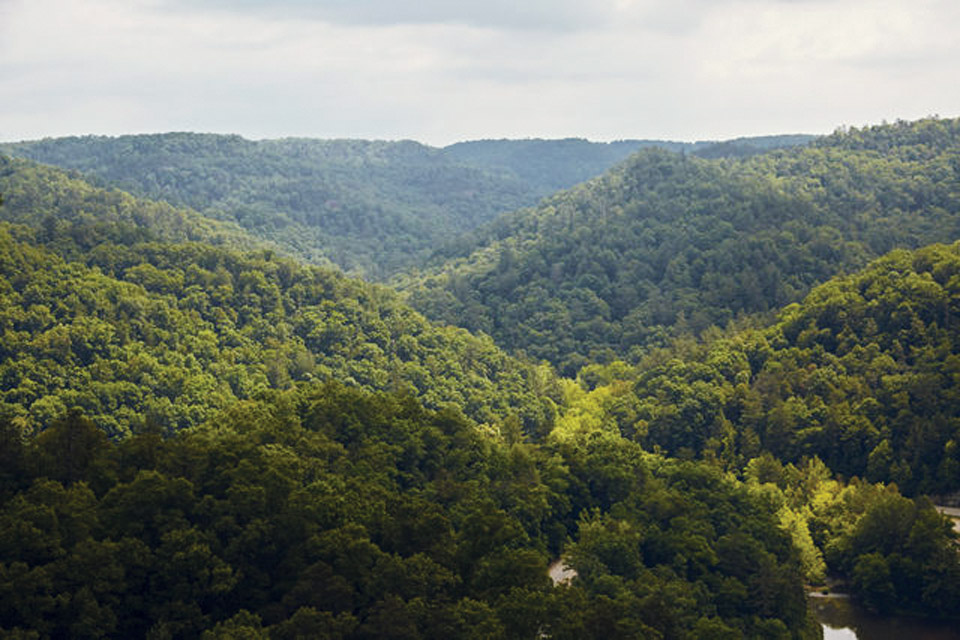 Kentucky Slade State Resort Park (photo courtesy of Kentucky Department of Tourism)