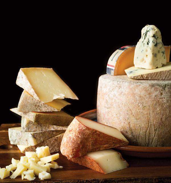 Variety of Lamp Post Cheese cheeses