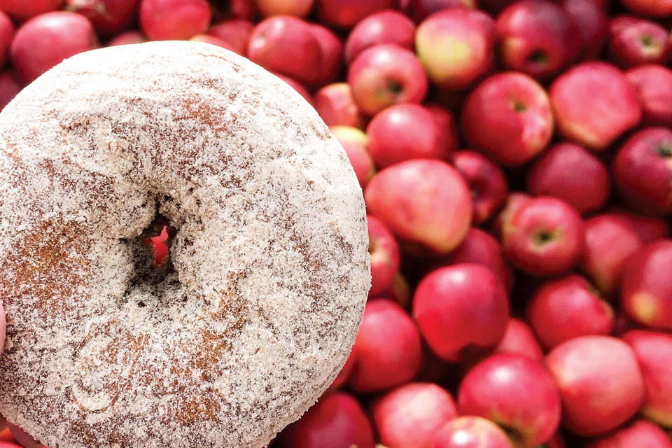 Uncle John's Cider Mill Donut (photo courtesy of Uncle John's Cider Mill)