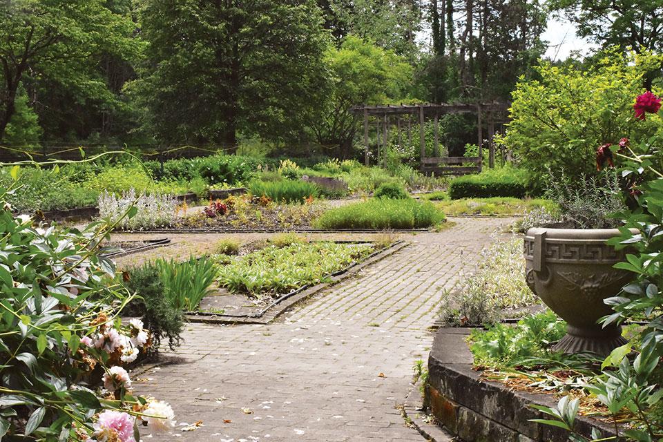 Quail Hollow Park's garden