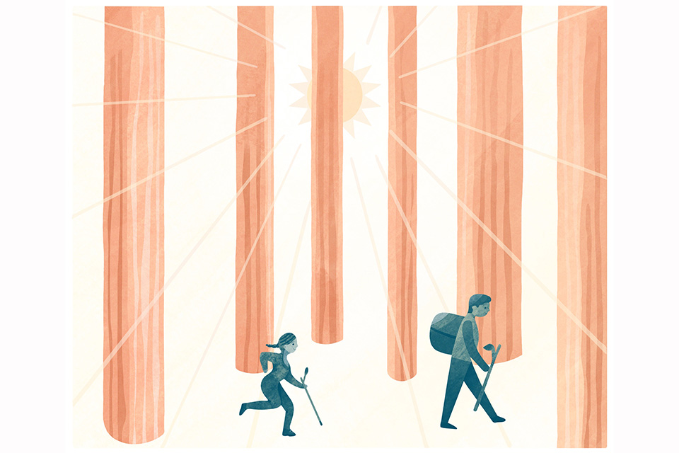 Explore Oak Openings (illustration by Diana Bolton)