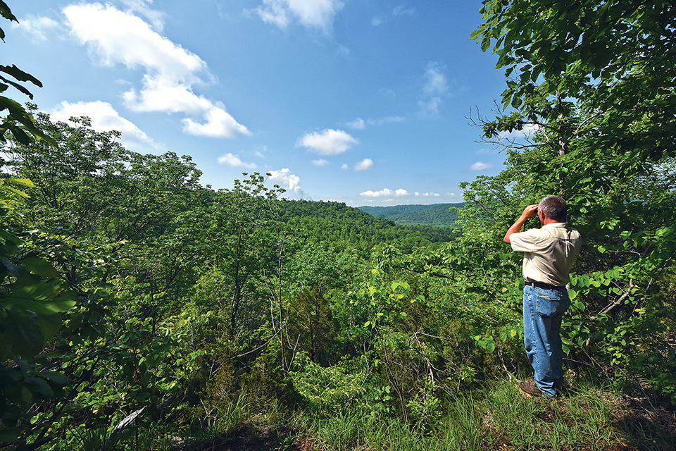 Edge of Appalachia Preserve System Portman Trail overlook (photo by Randall Schieber)