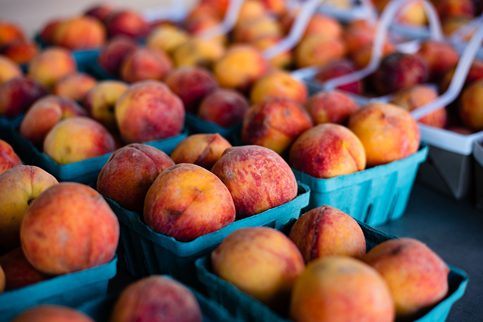 Peaches at Hershberger's (photo by Kristen Jones)