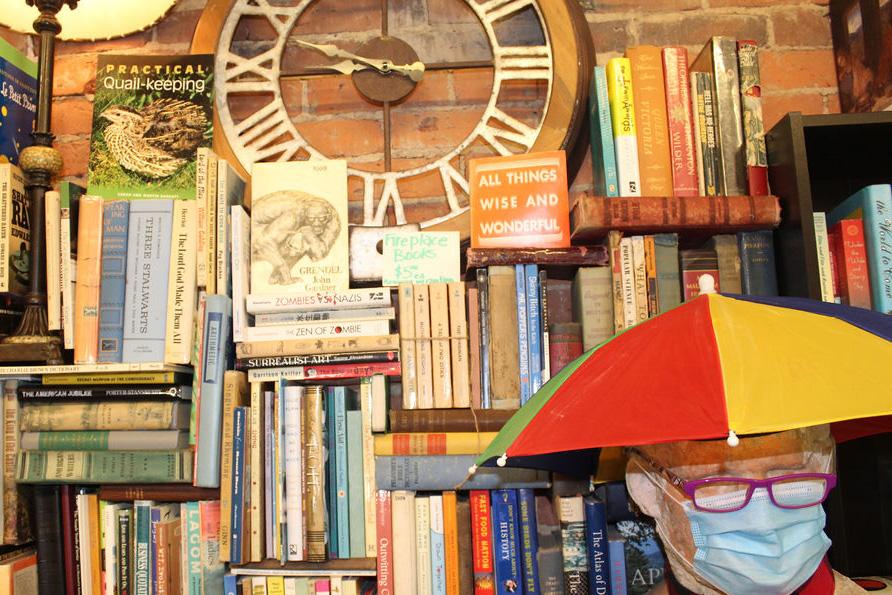 Mulberry Street Books shelf with man (photo by Shawn Kimberlin)