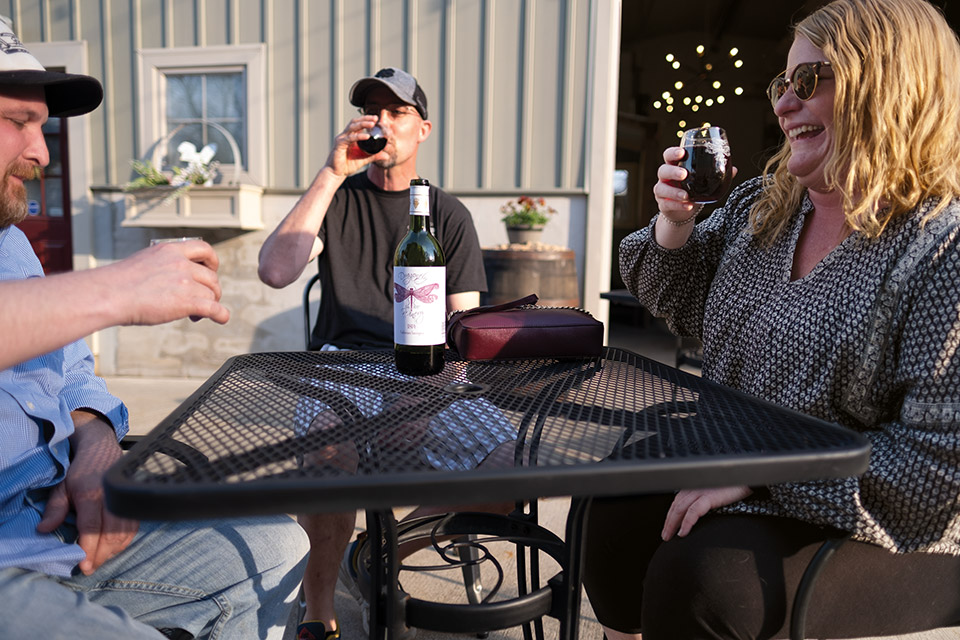 Patrons on the Dragonfly Winery patio (photo by William Schertz)