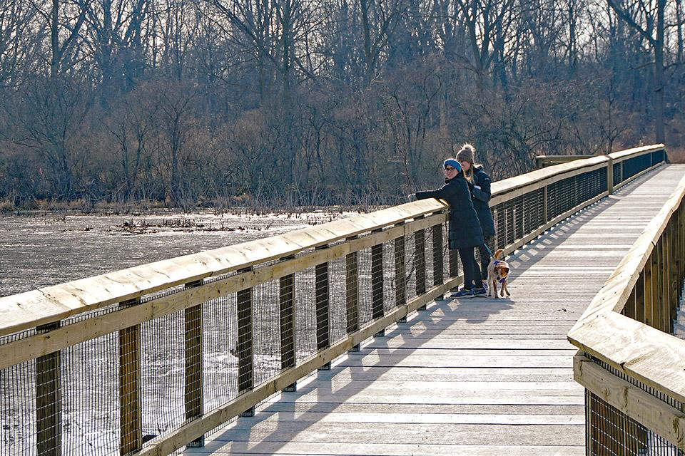 Manhattan Marsh Preserve Metropark boardwalk (courtesy of Metroparks Toledo)