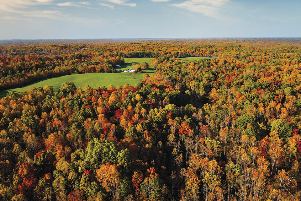 Wayne National Forest aerial view in fall (photo by Daniel Woodcock)