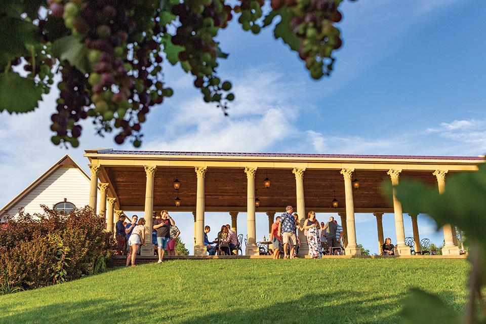 South River Vineyard pavilion (photo courtesy of South River Vineyard)